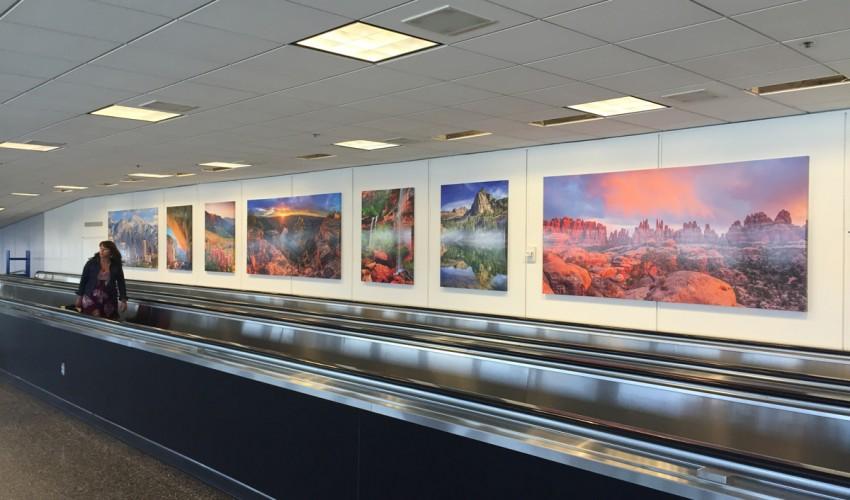 Airport Art Installation
